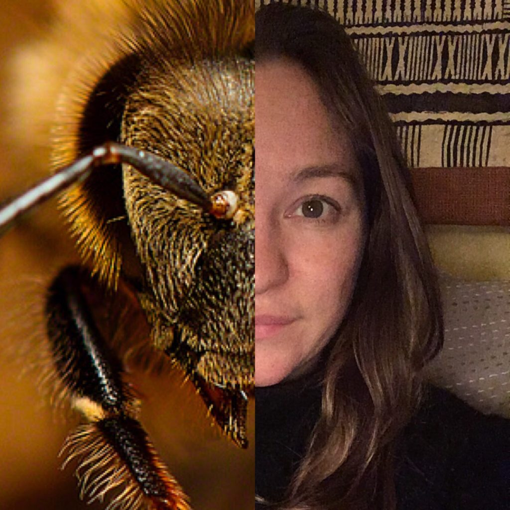 Bee Laura Maigatter Facial Recognition