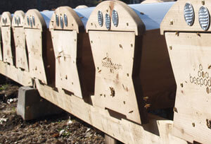 Beepods Beekeeping for Farms & Ranches